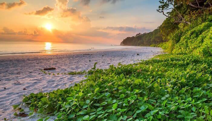 Havelock Island Destination Image Radhanagar Beach